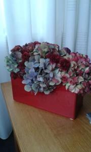 Hortensia's en bolchrysant